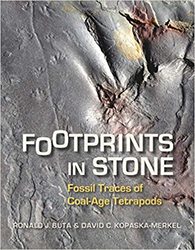 Footprints in Stone cover