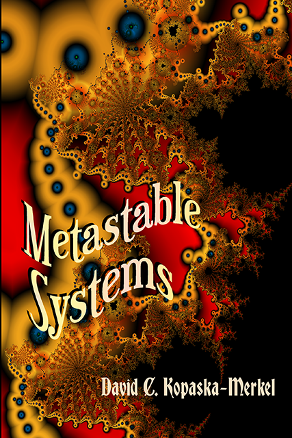 Cover of Metastable Systems by David Kopaska-Merkel